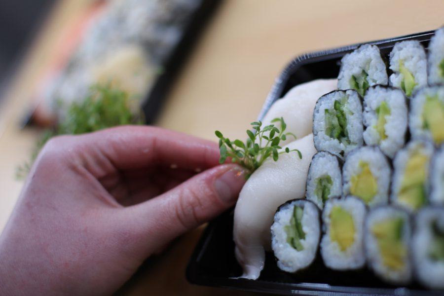 Ryžu mám, riasy mám, teraz ryby! (časť 2.)